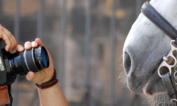Horse-Shooting