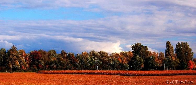 Farben des Herbstes 05