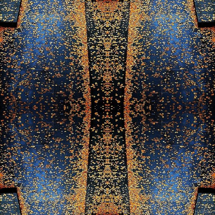 Birkenlaubkaleidoskop