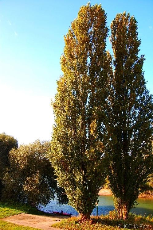 Farben des Herbstes 07