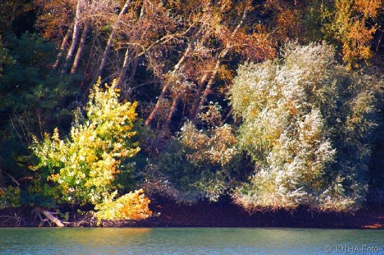 Farben des Herbstes 11