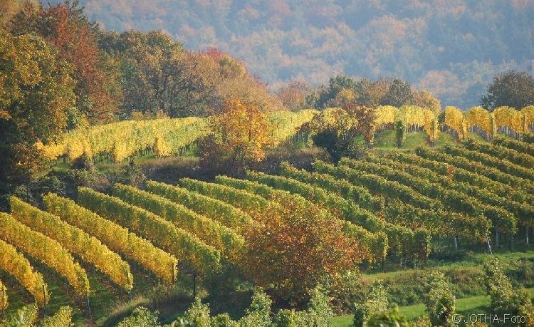 Farben des Herbstes 14