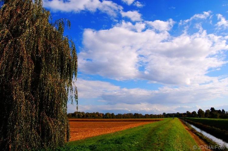 Farben des Herbstes 16