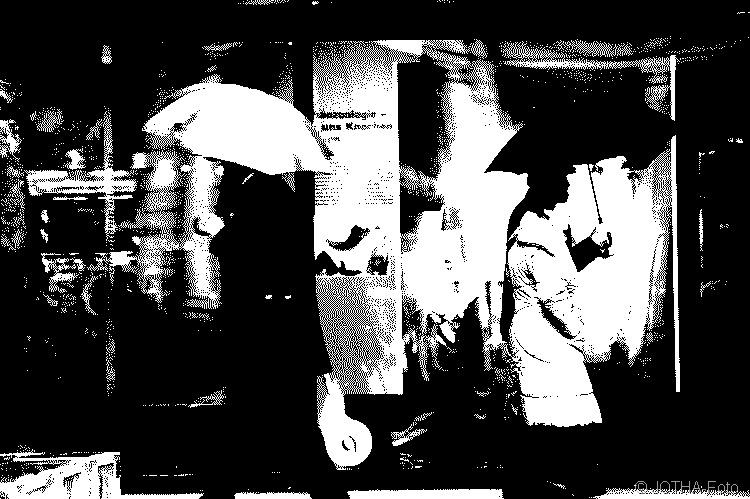 Schirmträger01