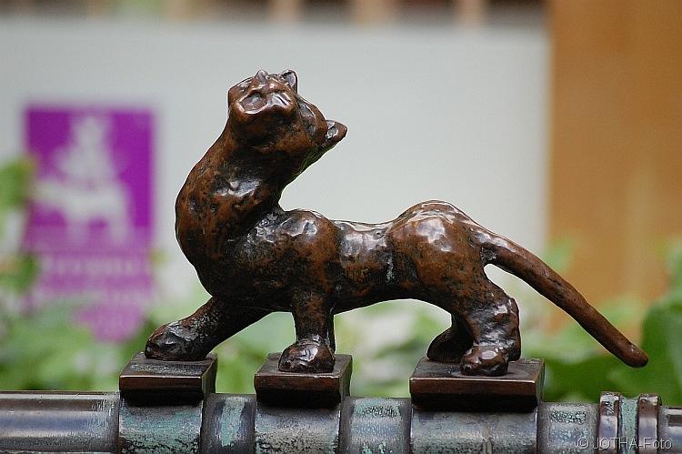 Katze in Bremen