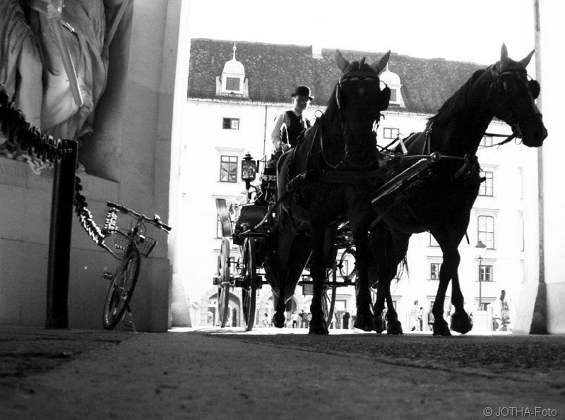 TordurchfahrtmitPferden_thumb.jpg