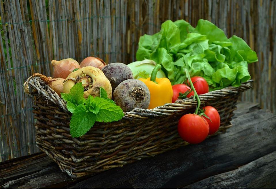 13 ernährung pixabay