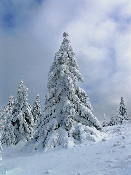 winter-1769049_960_720