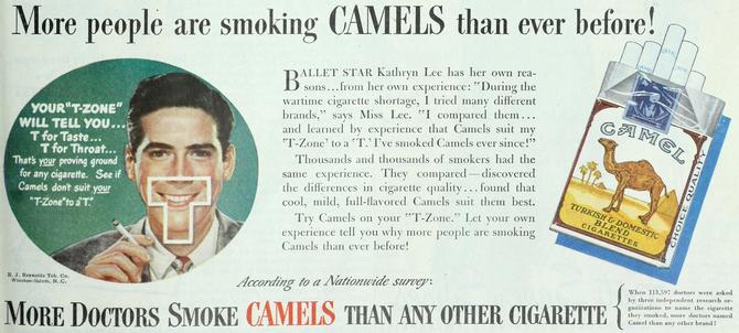 140 camels wc
