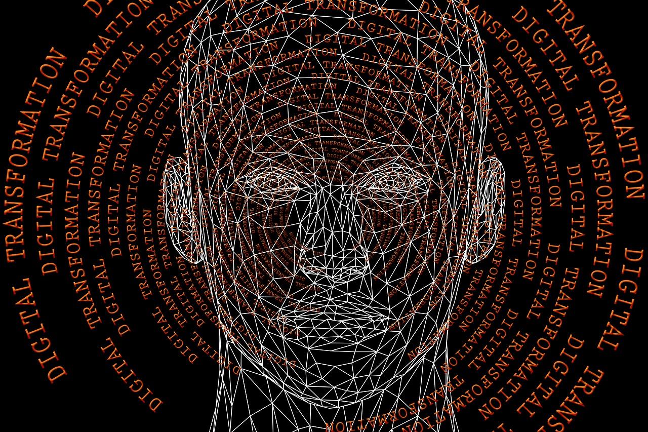 digitization-4651799_1280 Hariri pixabay