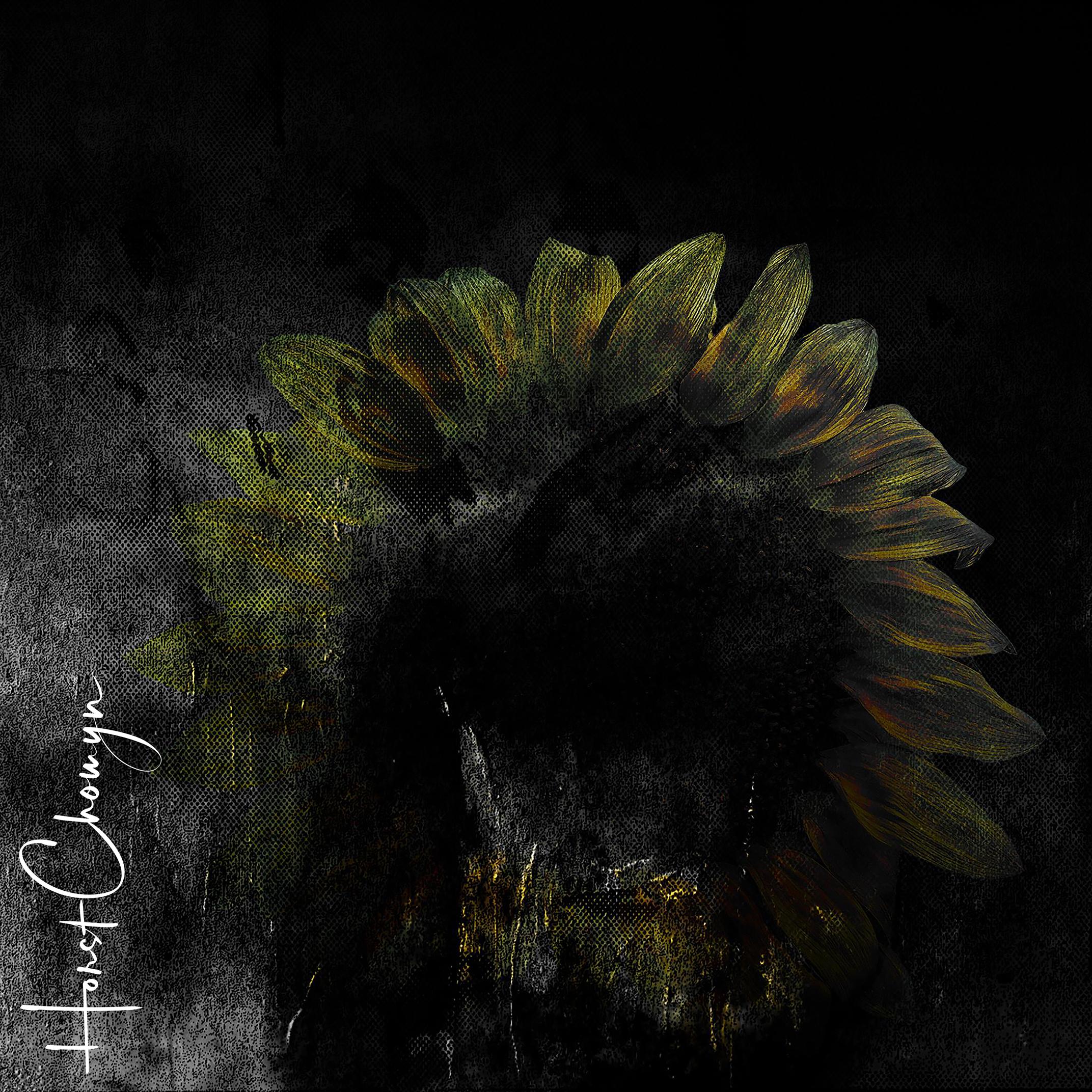 Sonnenblumenfinsternis